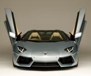 2013 Lamborghini Aventador LP 700-4 Roadster 1