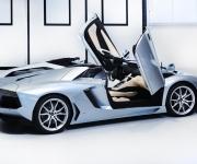 2013 Lamborghini Aventador LP 700-4 Roadster 12