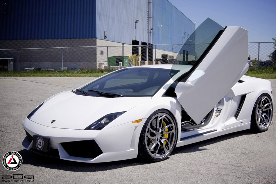 Wide Winged Gallardo
